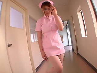 momoka nishina pet nurse part
